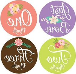 Belly Doodles 16 Baby Month Stickers Flowers
