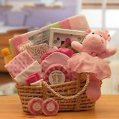 New Baby Girl Gift Basket - Moses Baby Carrier Basket - Ship