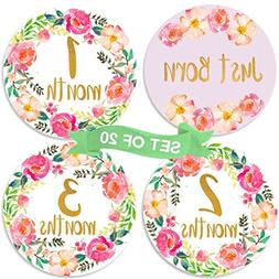 Baby Monthly Milestone Stickers | Set of 20 Floral Gold Stic