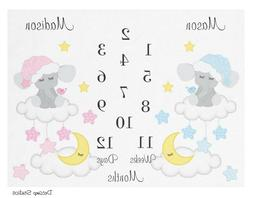 Personalized Twin Blanket Monthly Baby Girl Boy Milestone Bl